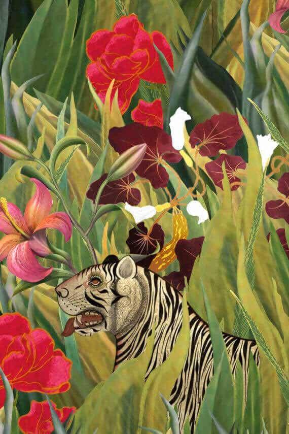 Grafika Dżungla Henri'ego